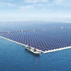 Globalizing Solar, Protecting Solar